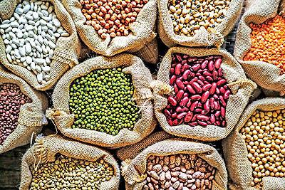 9 گام رونق صادرات موادغذایی