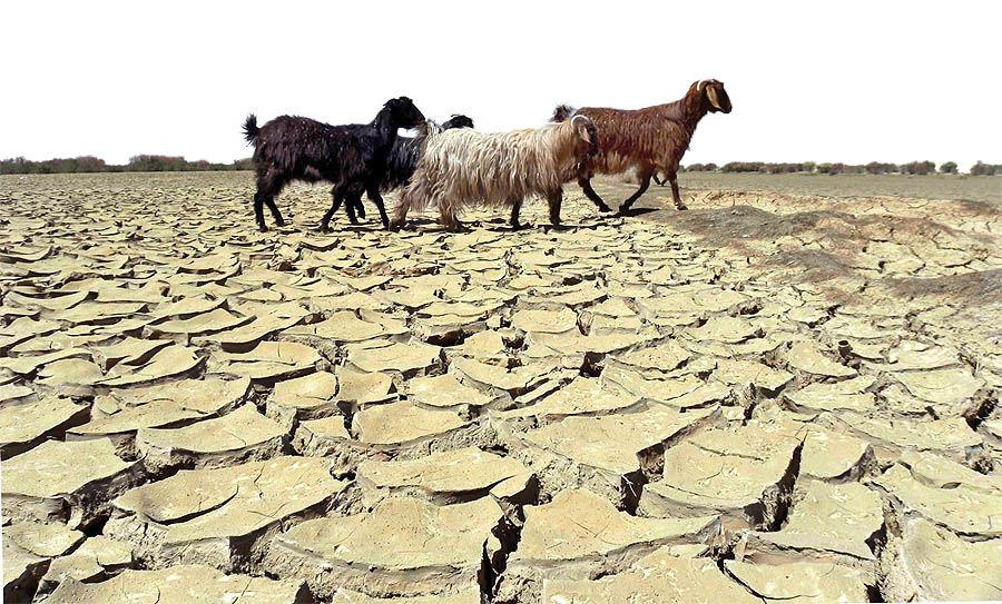 متهم اصلی تغییر الگوهای بارشی