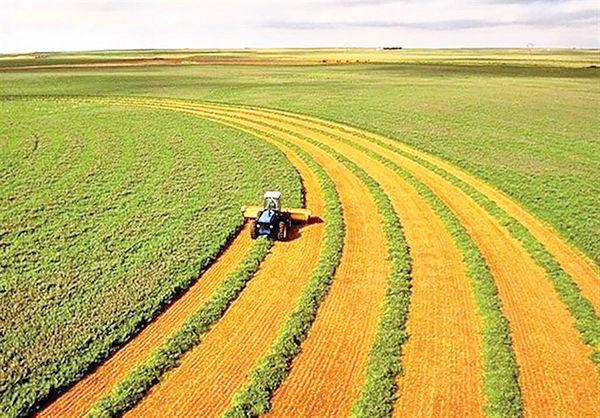 سیاه و سفید کرونا برای کشاورزی