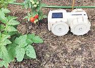 ساخت روبات محافظ مزرعه