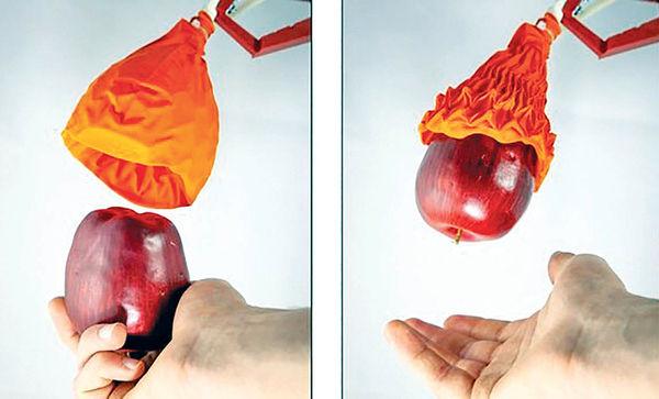 ساخت روبات با الهام از گیاه گوشتخوار