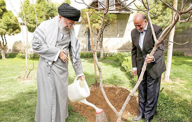 مسوولان مانع از بین رفتن درختان و باغات موجود در شهرها شوند