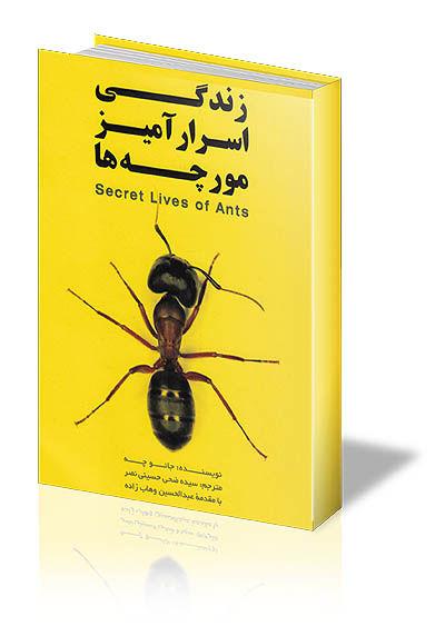 زندگی الهام بخش مورچهها