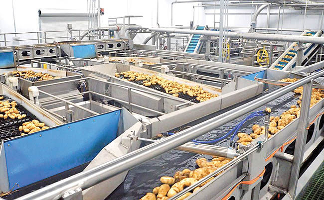 موانع حفظ بازار جهانی غذا