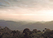مشارکت دولت-مردم رمز شکوفایی گردشگری کلمبیا